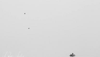 crno-bijele-fotografije-066