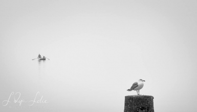 crno-bijele-fotografije-072