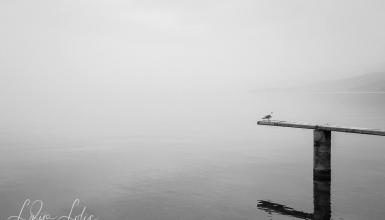 crno-bijele-fotografije-092
