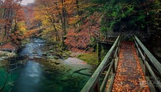 most-kroz-jesen