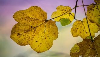 plitvice-jesen-043