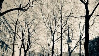 zimsko-popodne-u-becu