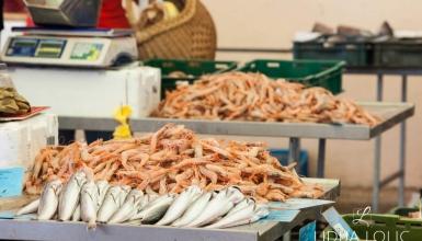split-peskarija-ribarnica-002