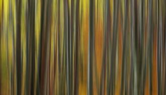plitvicka-jezera-jesen-fotografije-1