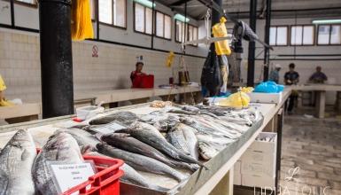 split-peskarija-ribarnica-005