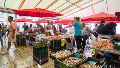 split-peskarija-ribarnica-008