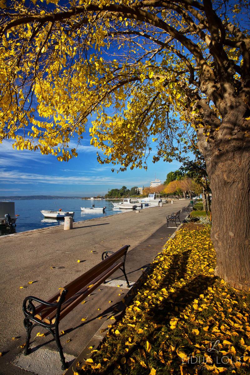 Jesen u Kaštel Starom