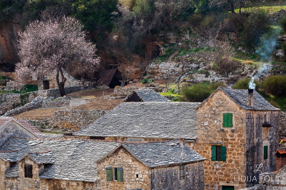 Dol-brac-rooftops