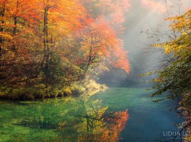 jesen-kamacnik-gorski-kotar-05
