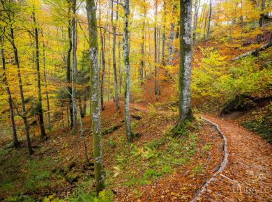 jesen-plitvicka-jezera-03